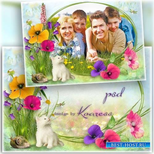 Рамка для фото с полевыми цветами - Летний луг