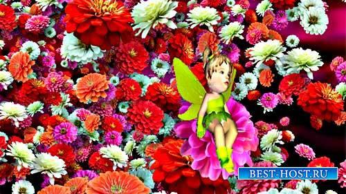 Детский футаж - Лечу среди цветов