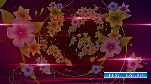 Футаж фона - Круговерть цветов
