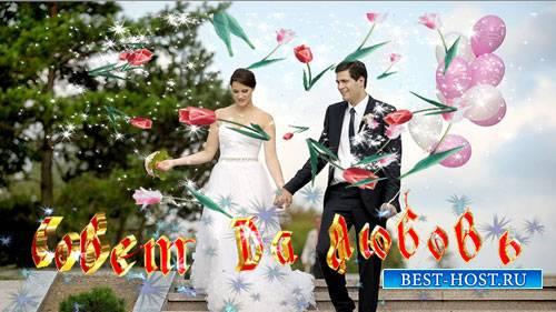 Свадебный футаж  - Совет да любовь
