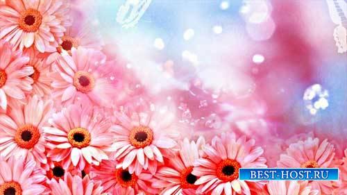 Футаж фона - Красивые цветы,красивое видео