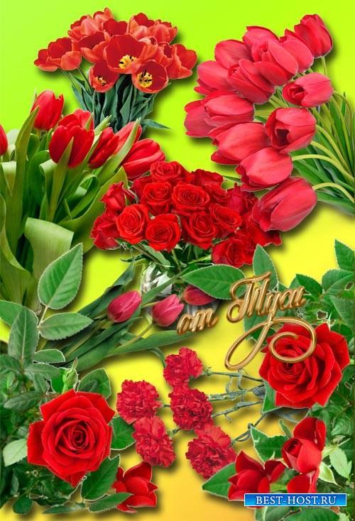 Цветы любви - Клипарт