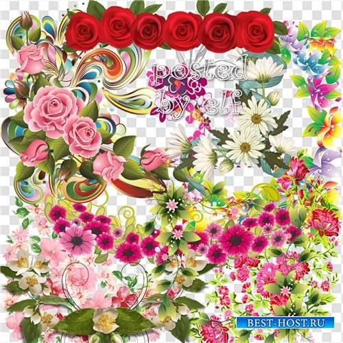 Цветочный клипарт для дизайна в фотошопе