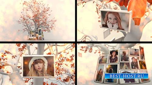 Слайдшоу Дерево Памяти - Project for After Effects (Videohive)