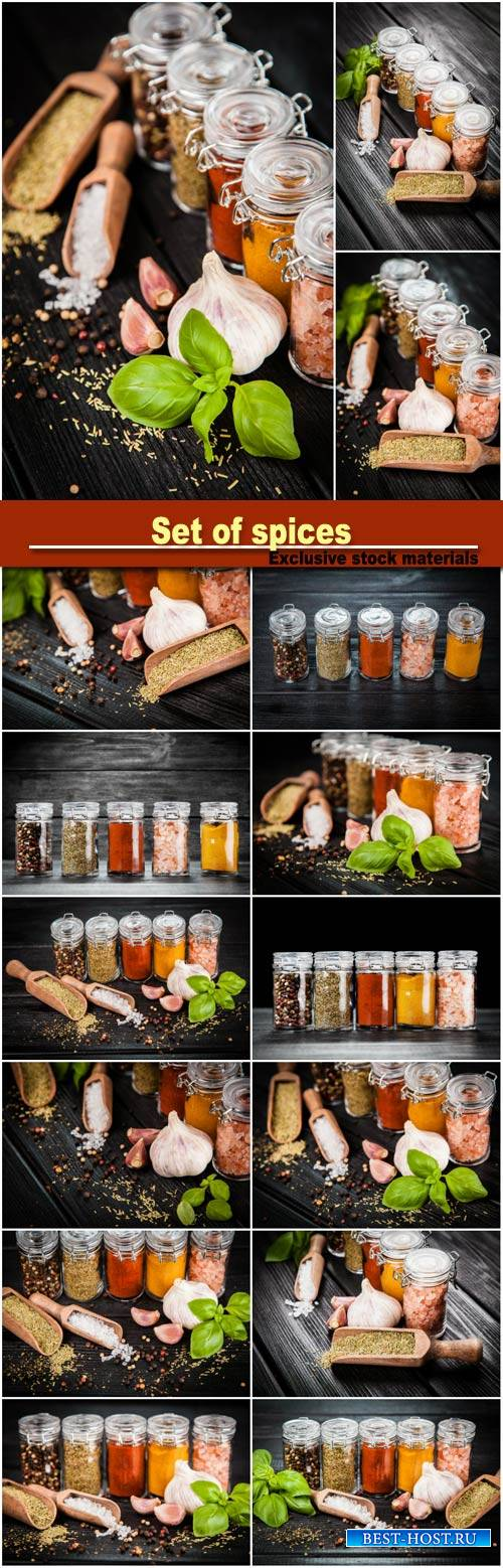 Set of spices on a wooden background