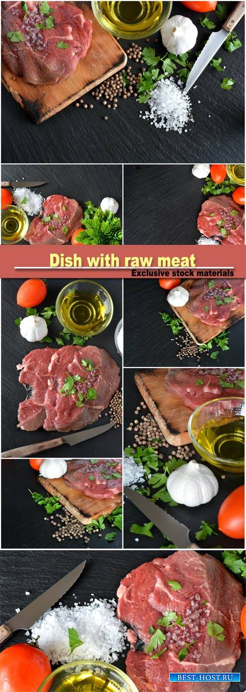 Dish with raw meat