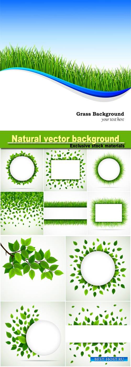 Natural vector background, grass and leaves