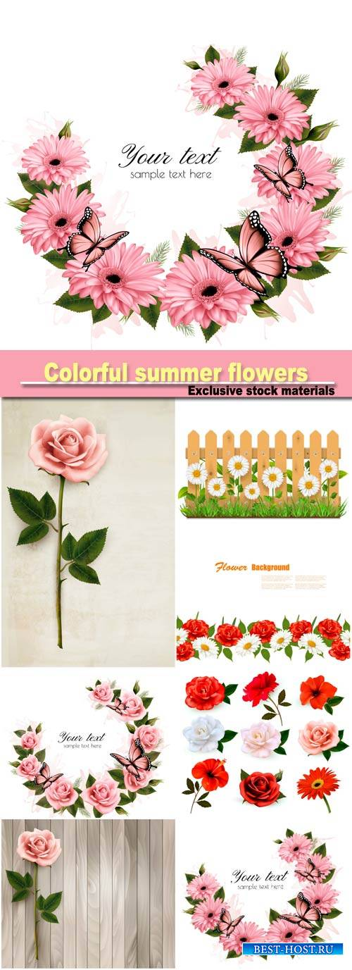 Big set of colorful summer flowers