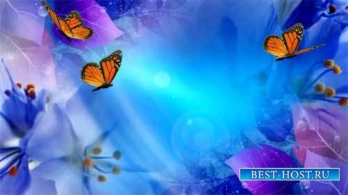 Футаж фона - Полет цветов и бабочек