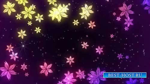 Футаж фона - Какие милые цветочки