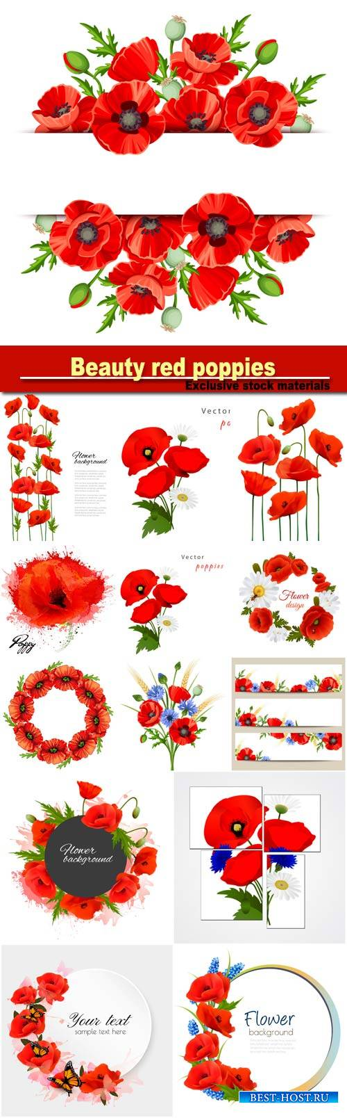 Beautiful background with beauty red poppies, vector floral