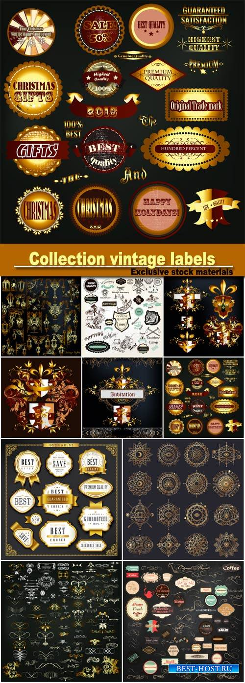 Collection of vector vintage labels, set of calligraphic elements, geometri ...