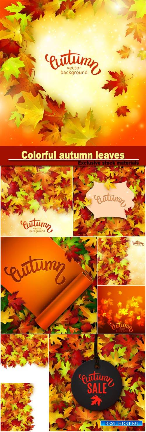 Vector illustration with colorful autumn leaves, card template, natural bac ...