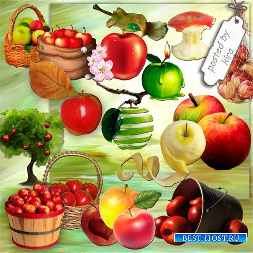 Клипарт к яблочному спасу - Яблоки