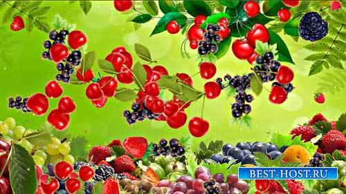 Футаж фона - Полет ягод