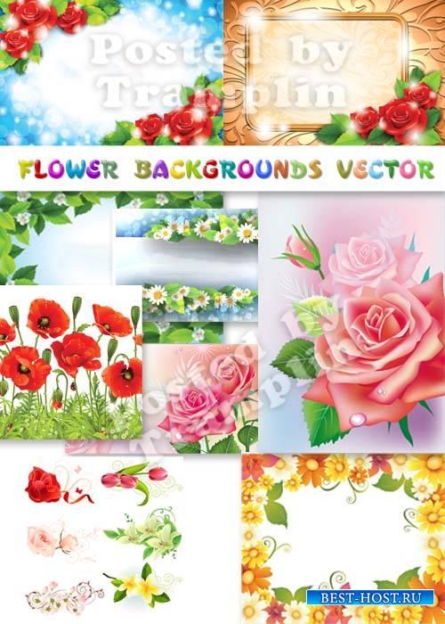 Цветочные фоны в векторе - Розы, ромашки, лилии, маки