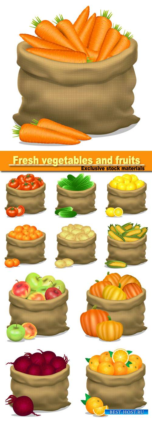 Illustration of a sack of apples, corn, potatoes, cucumbers, carrots, on a white background, vector icon