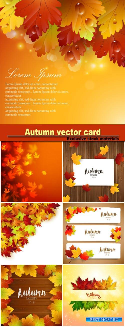 Autumn vector card, colorful autumn leaves background