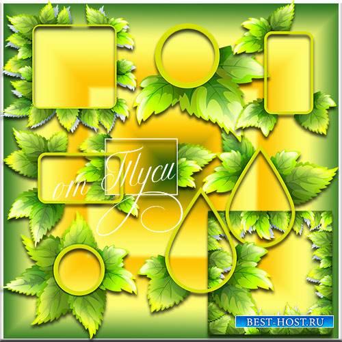 Рамки из листвы