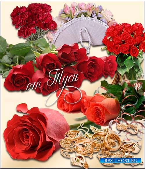 Клипарт - Нежный цвет и аромат - розы каждого пленят