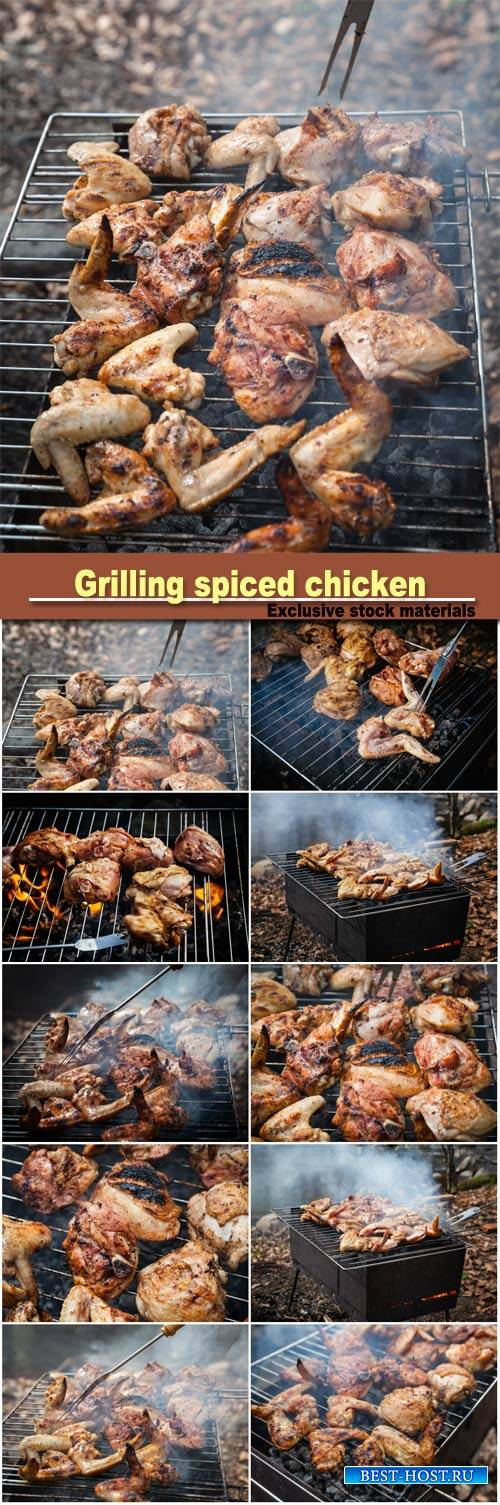 Grilling spiced chicken in grid on charcoal