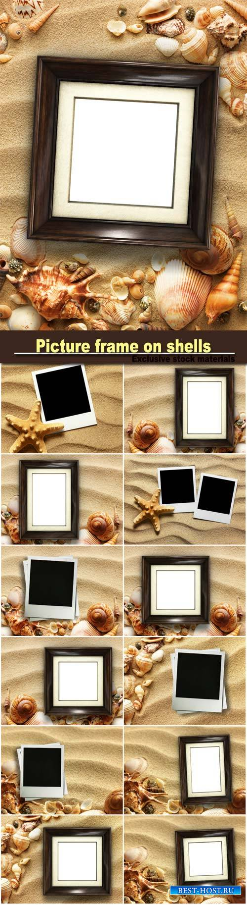 Picture on shells and sand background