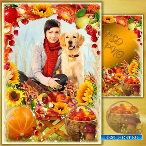 Рамка для фото - Осень щедро дарит нам свои краски