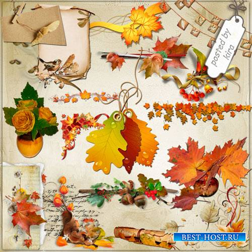 Клипарт - Осенний декор для ваших работ