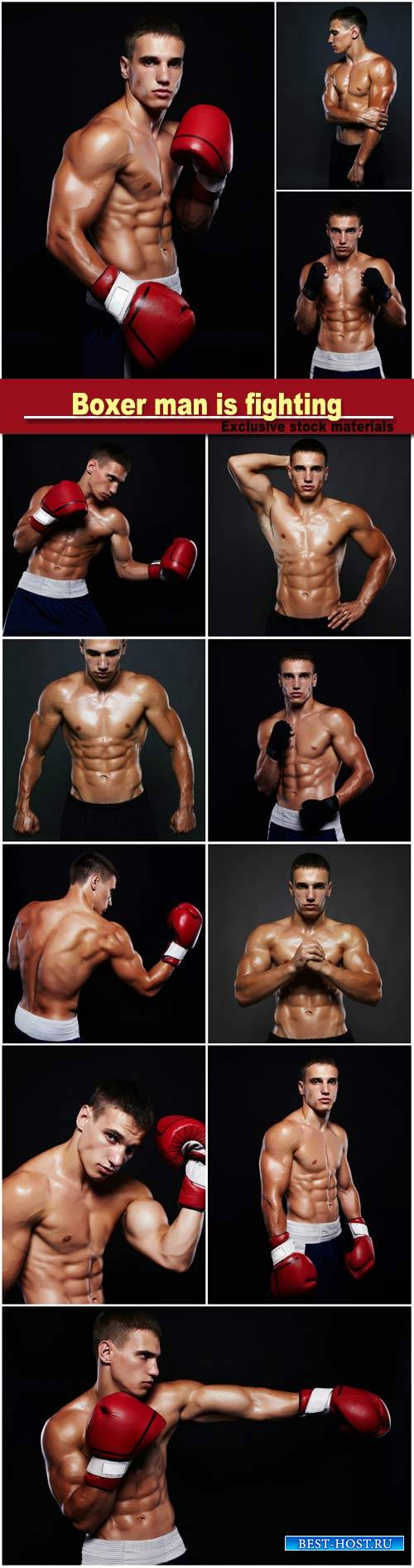 Boxer man is fighting, handsome muscular man, bodybuilding