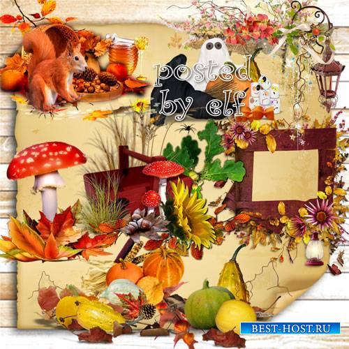 Осенние элементы и кластеры без фона – Осень