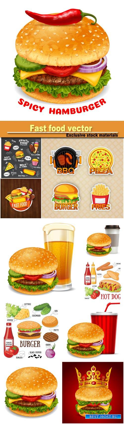 Burger and its ingredients, fast food vector illustration