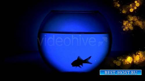 Изящные переходы 5954048 - Motion Graphic (VideoHive)