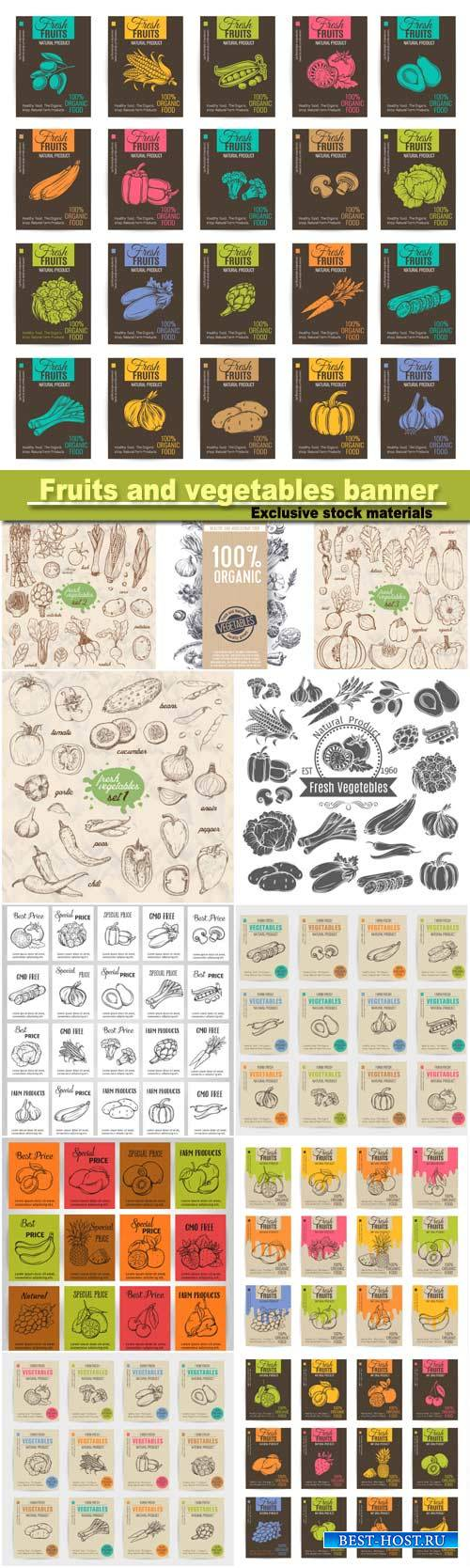 Hand draw bright vector  fruits and vegetables banner, stickers