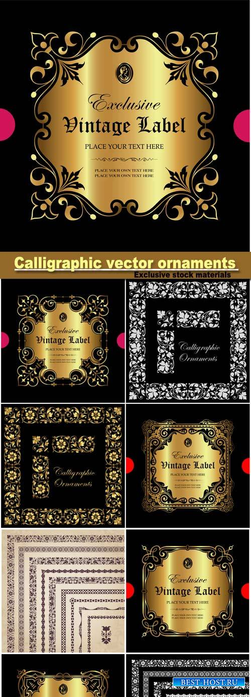 Calligraphic vector ornaments, borders and
