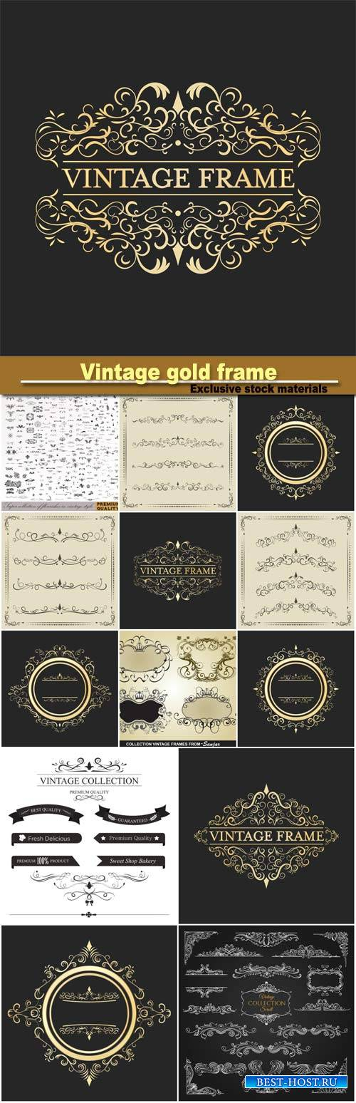 Vintage gold , calligraphic design elements, decorative vector illustration