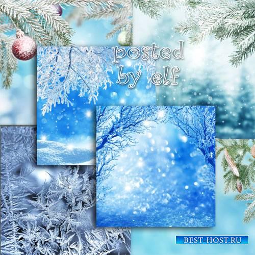 Зимние фоны с елкой, снегом, еловыми ветками в снегу