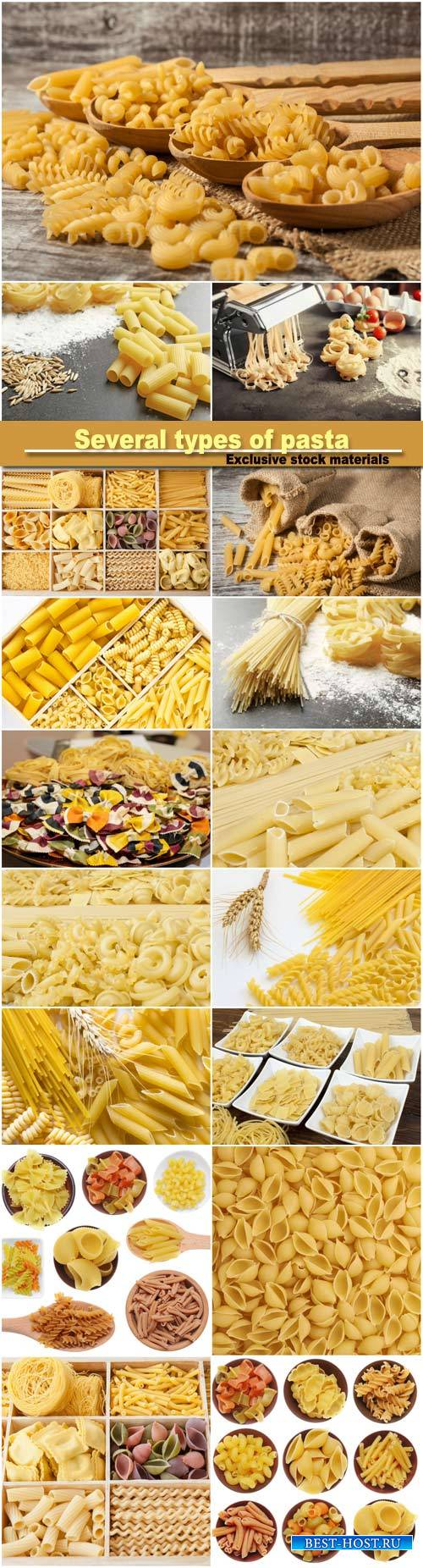 Several types of pasta, spikelets of wheat