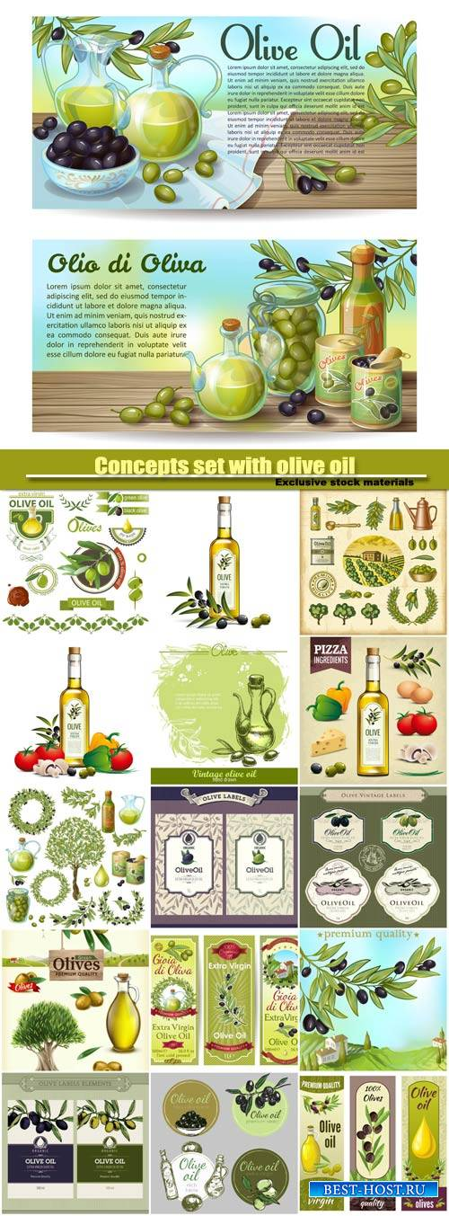Concepts set with olive oil, drawn background with olives vector illustrati ...