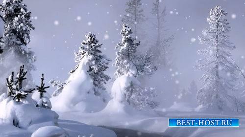 Видео футаж - Зимний лес