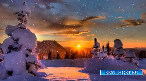 Футаж - Закат в зимнем лесу