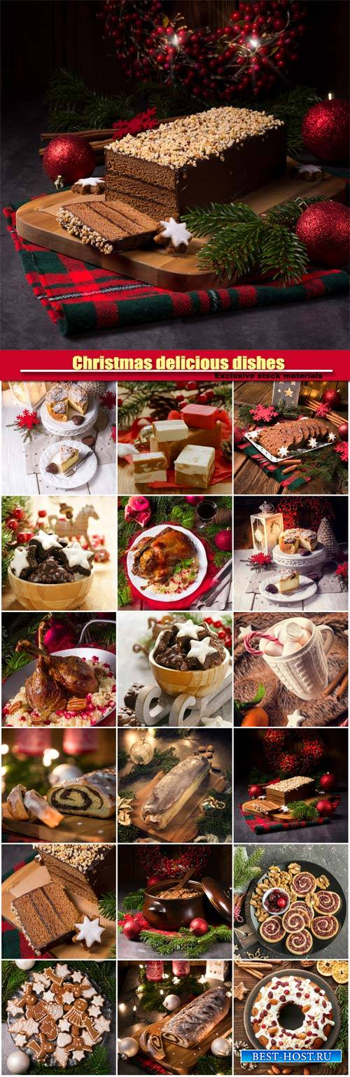 Christmas delicious dishes