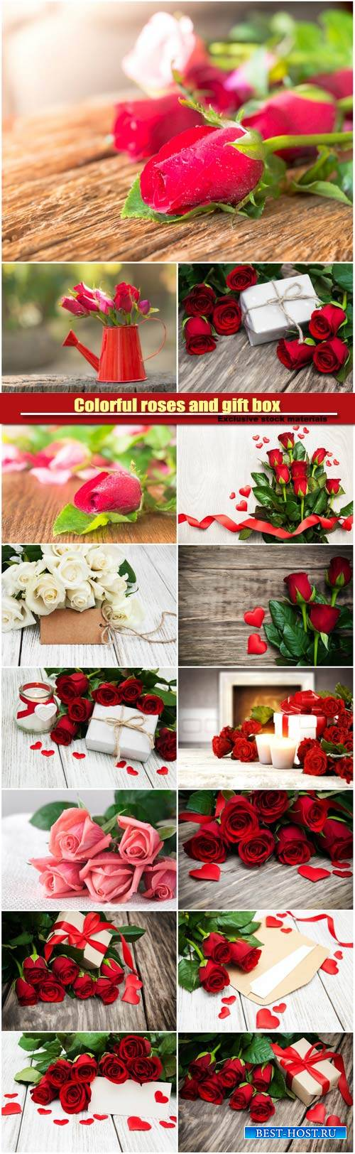 Colorful roses and gift box