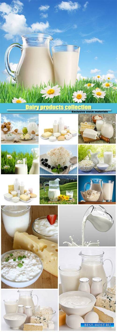 Dairy products collection