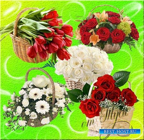 Клипарт - Корзина цветов