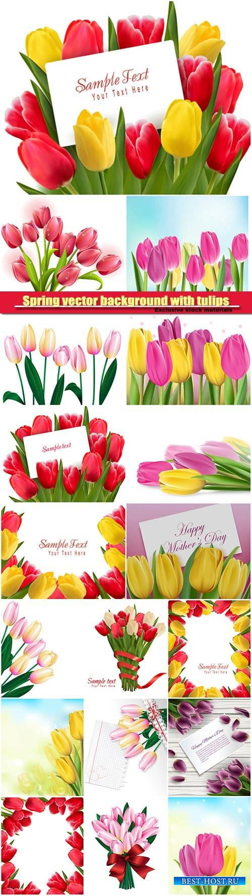 Spring vector background with tulips