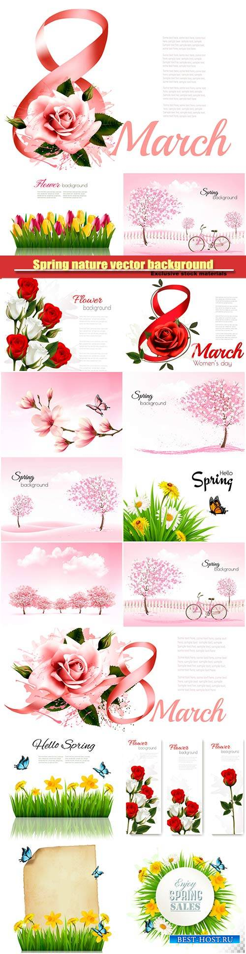 8th March illustration with rose, women's day, spring nature vector backgr ...