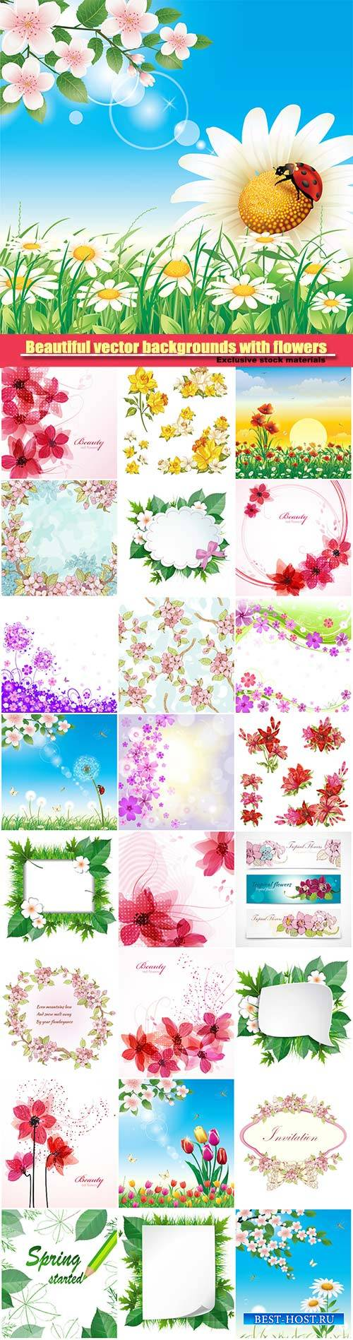Beautiful vector backgrounds with different flowers