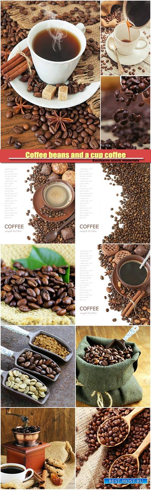 Coffee beans and a cup of fragrant coffee