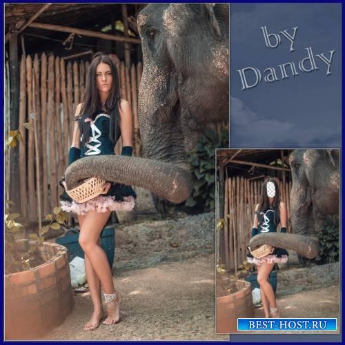Шаблон для фотошопа - Девушка со слоном