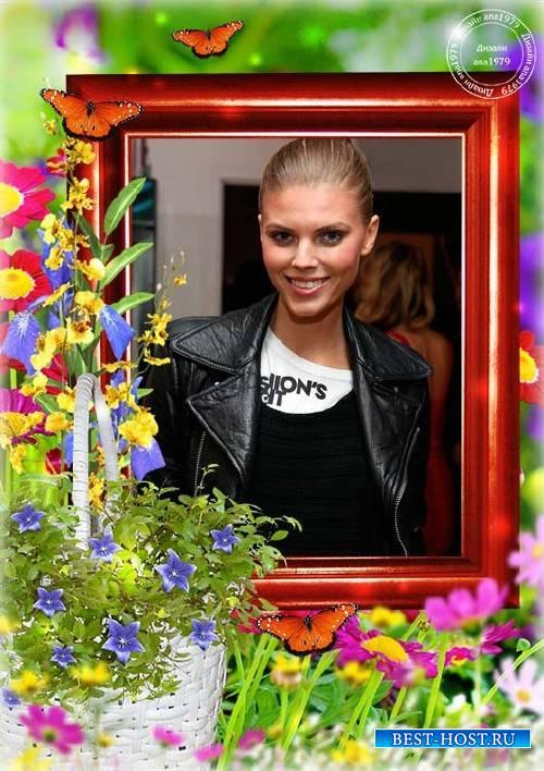 Рамка для фотошопа - Летние цветы